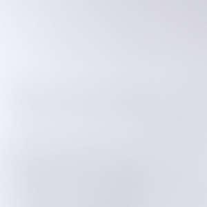 波麗面 201-皮白色 木紋板